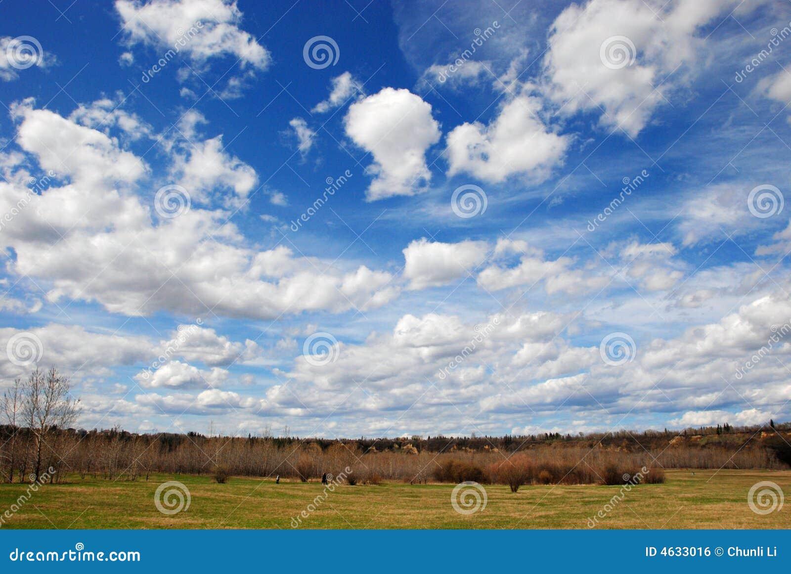 Nuvens acima das madeiras