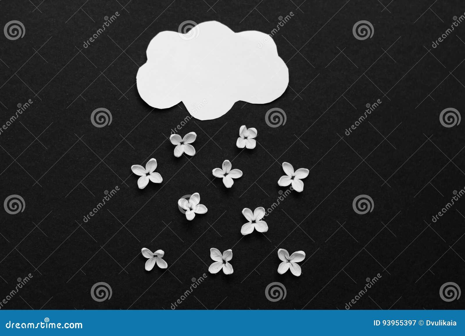 Fiori Bianchi Nuvola.Nuvola E Pioggia Di Carta Dei Fiori Bianchi Del Lilla Immagine