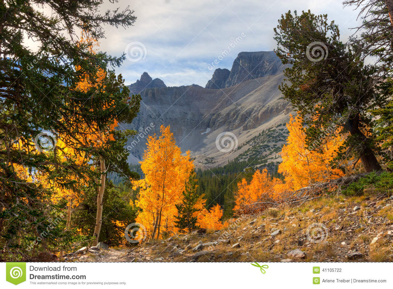 Nv Great Basin National Park Stock Photo Image Of Formations Boulders 41105722