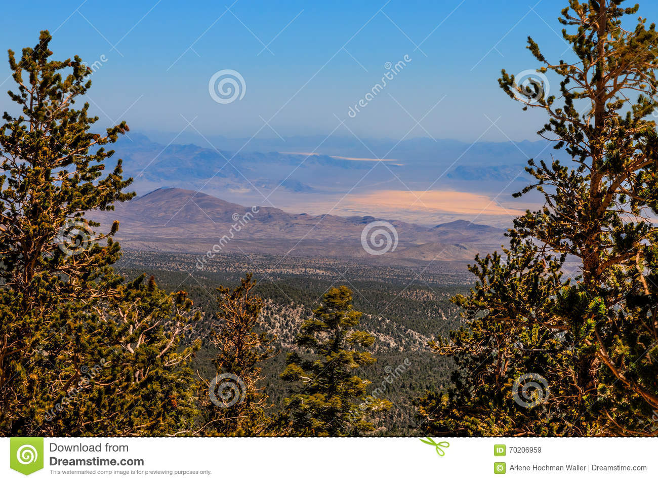 NV-Humboldt-Toiyabe National Forest-Spring Mountains
