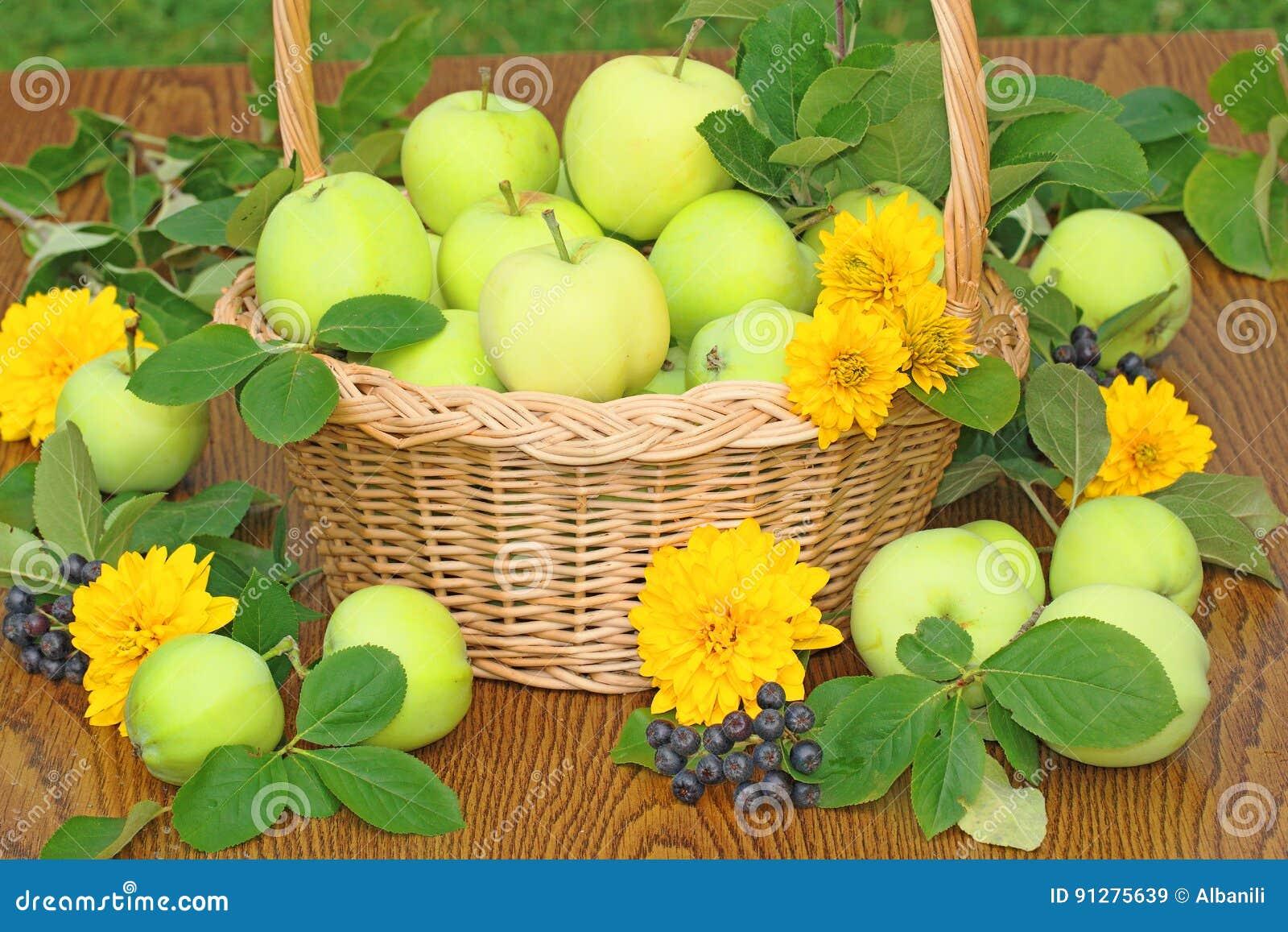Ny äpplekorg