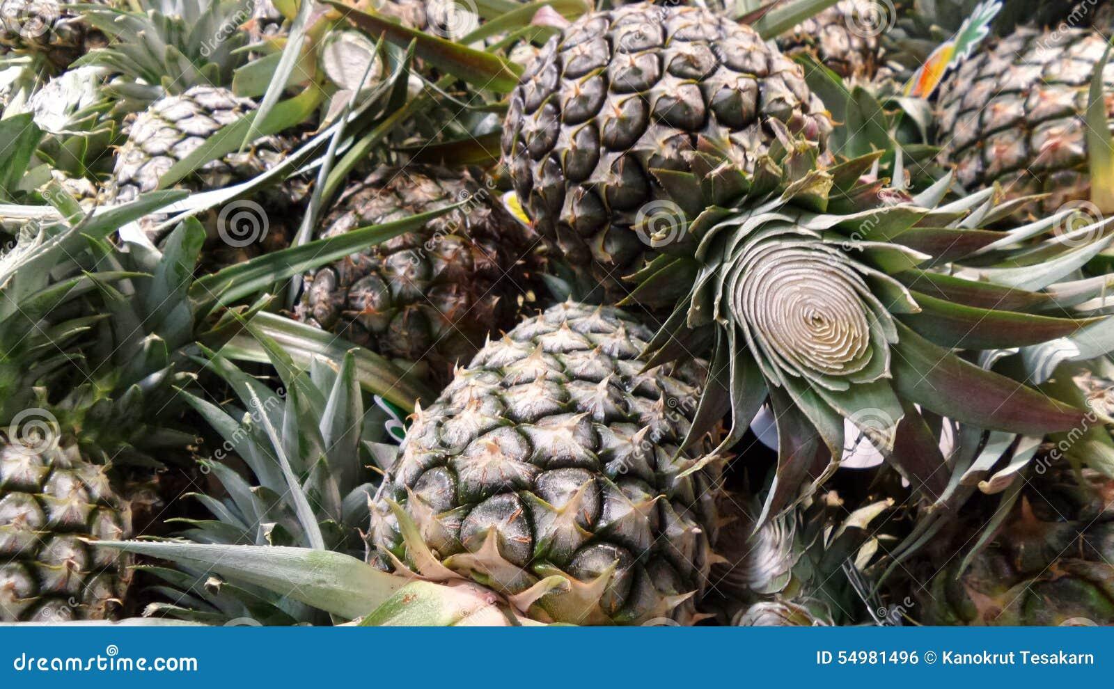 Ny ananas från fältet