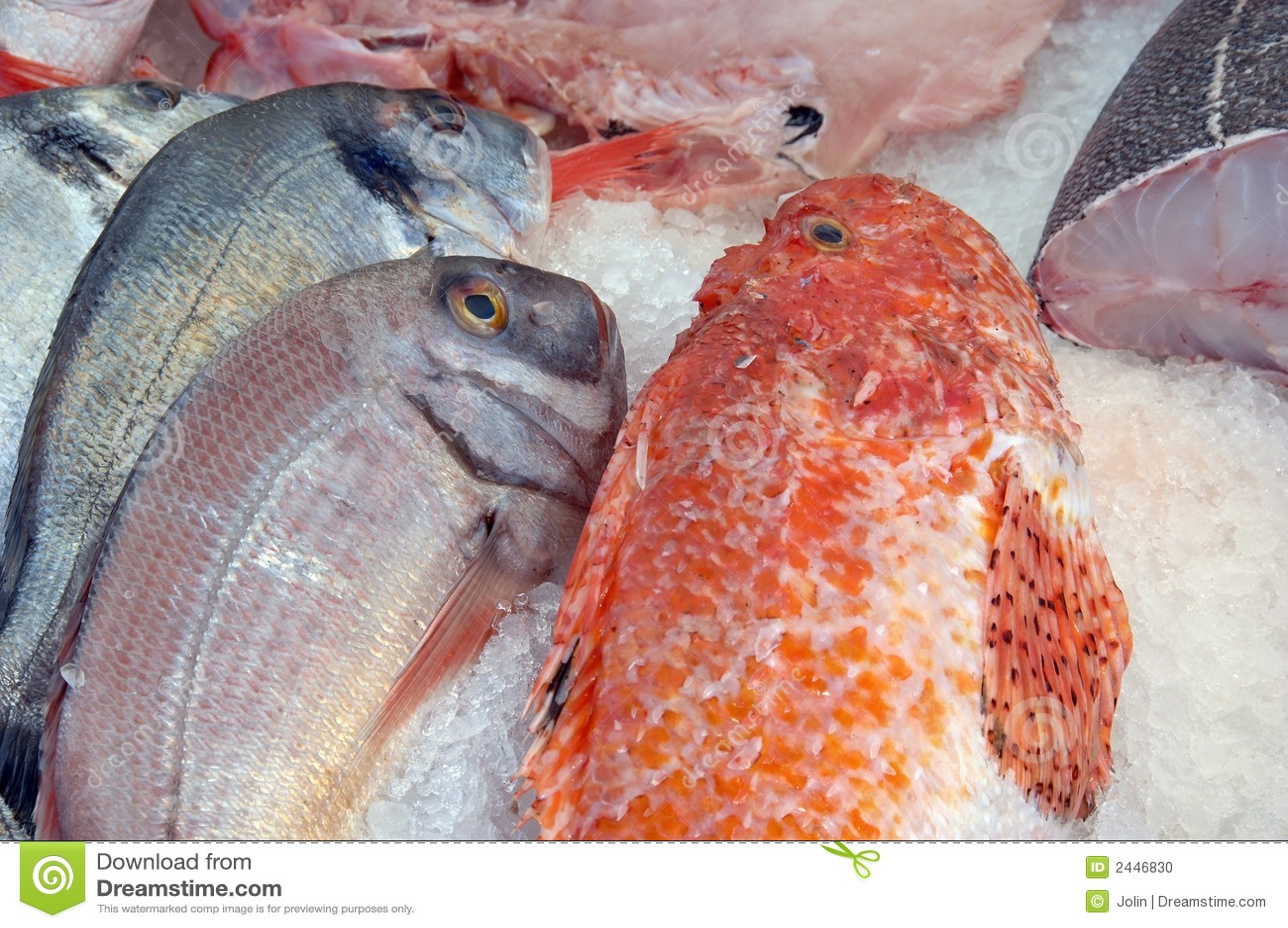 Ny is för fisk