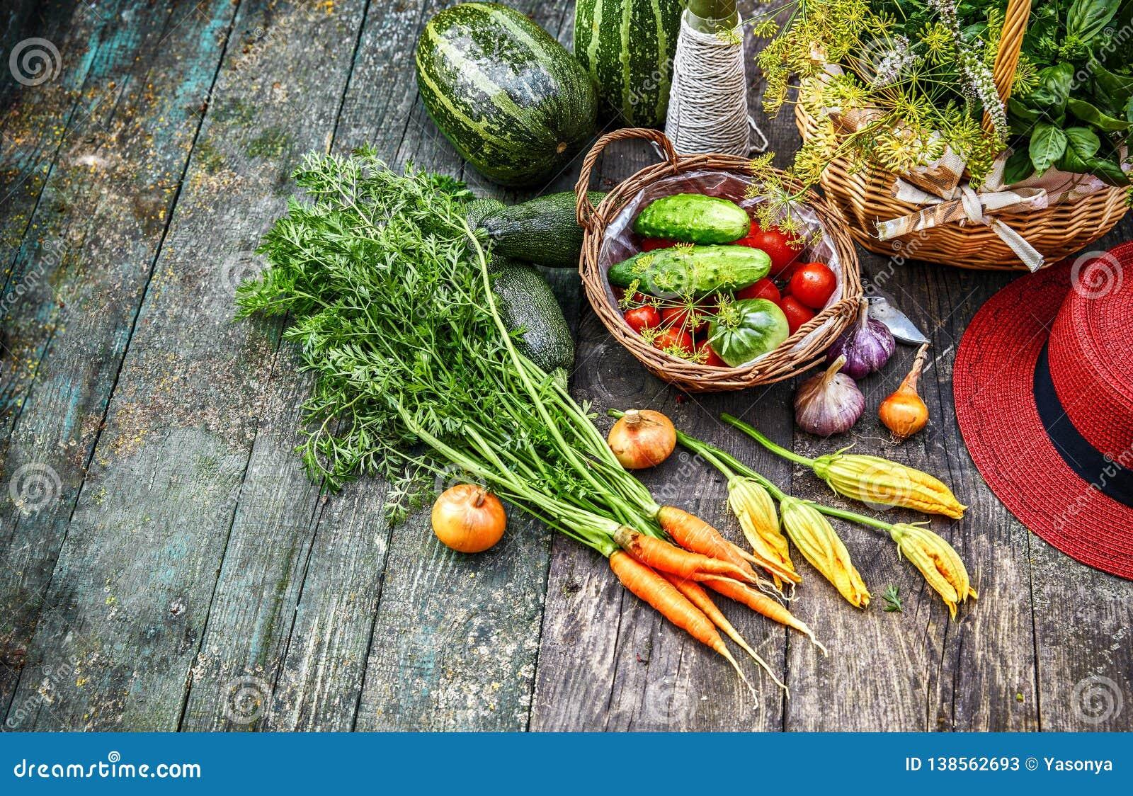 Ny grönsak och ört på gammalt trä