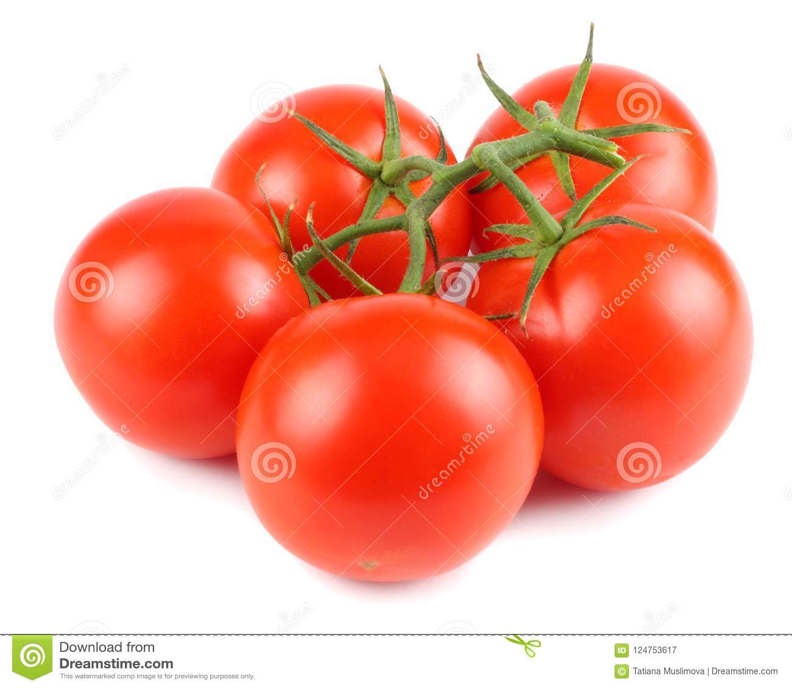 Ny isolerad tomatwhite för bakgrund close upp