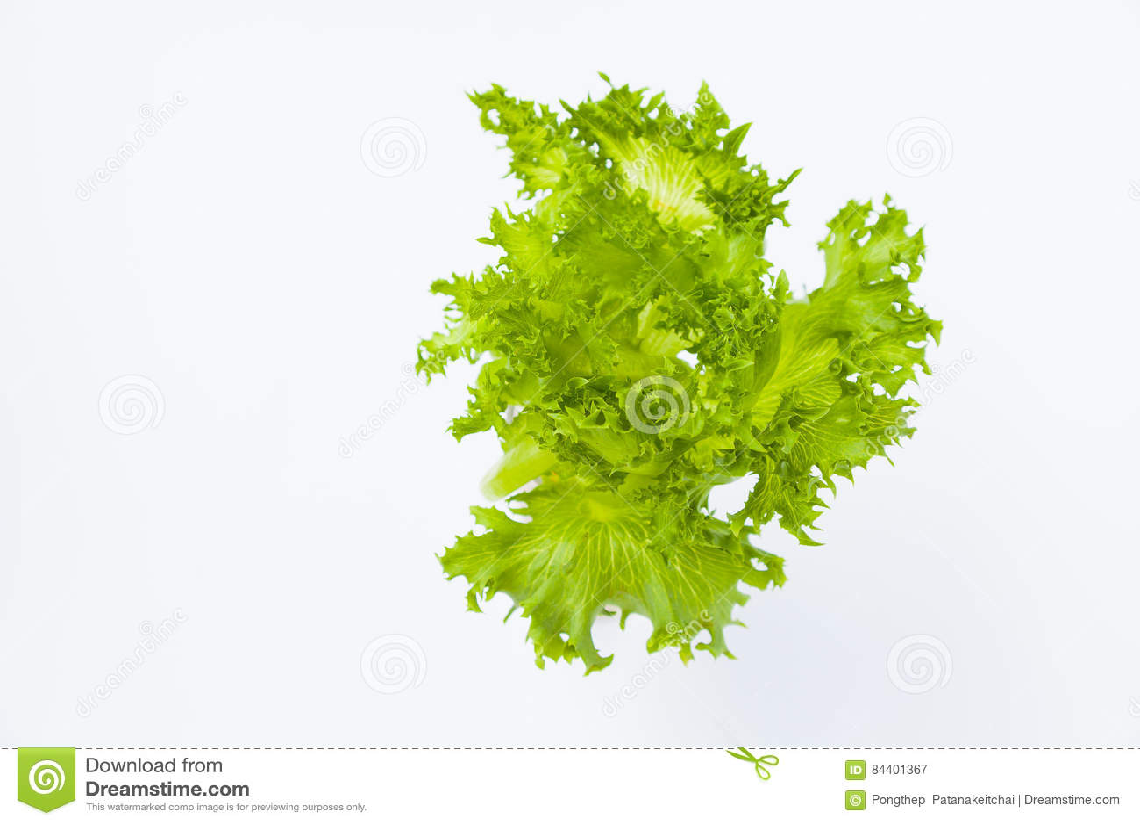 Ny japansk salladgrönsak för mat