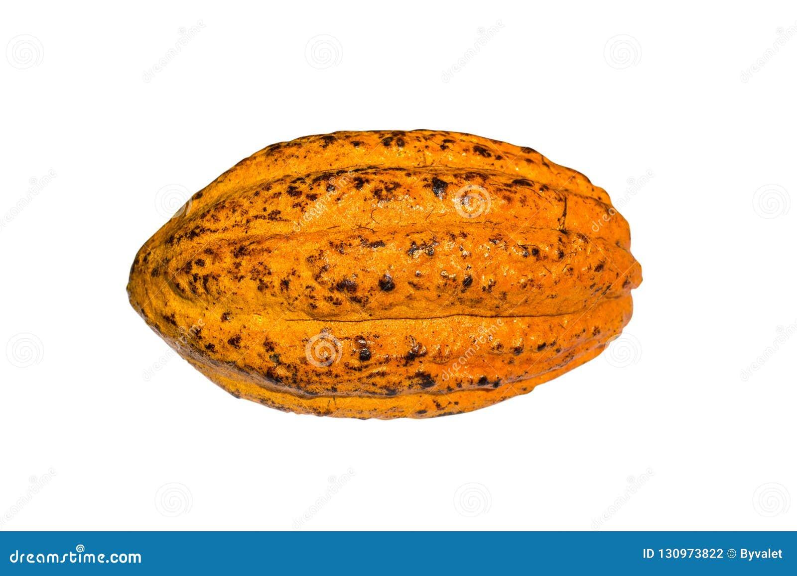 Ny kakaokakao