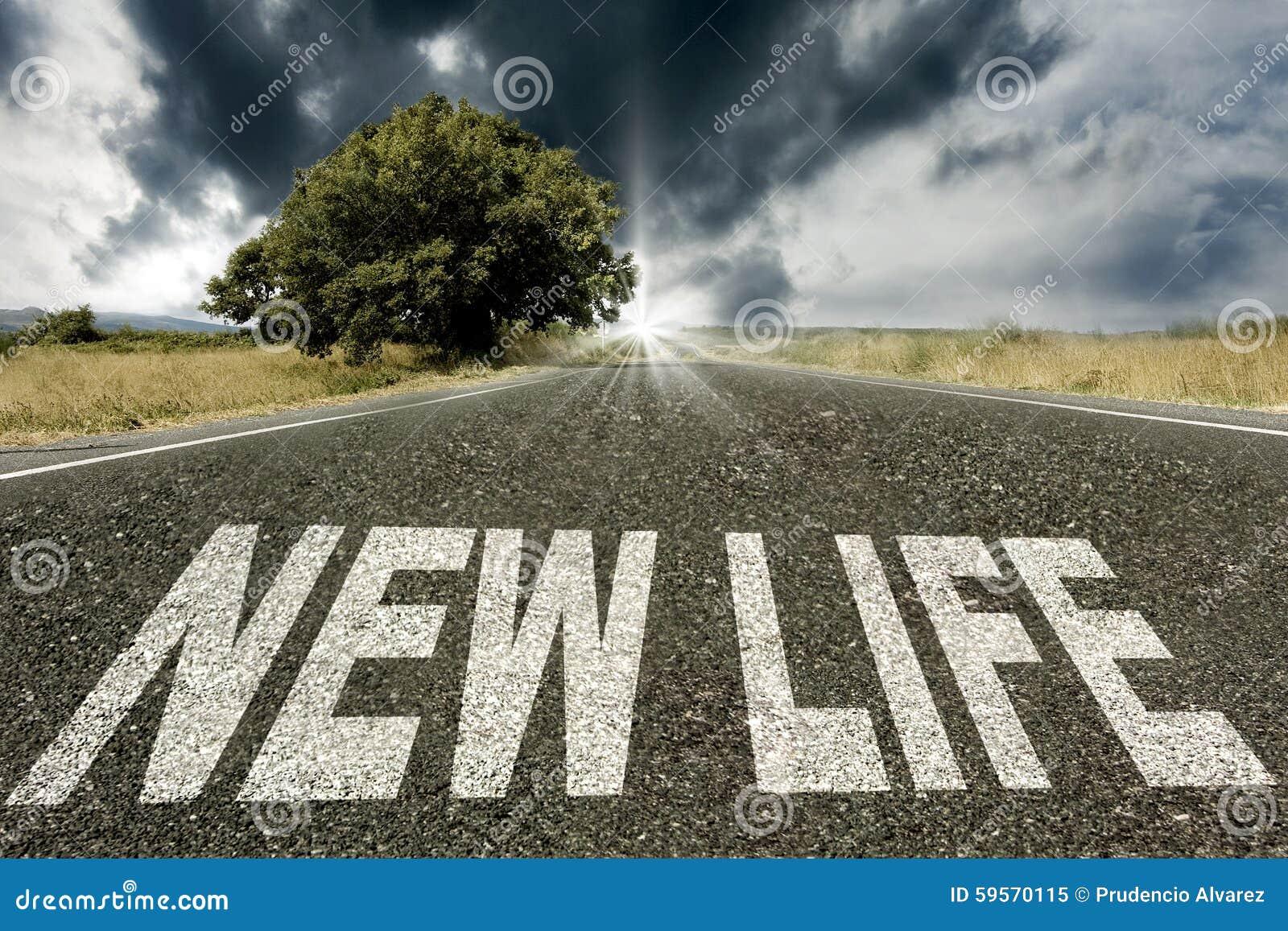 Ny livstid