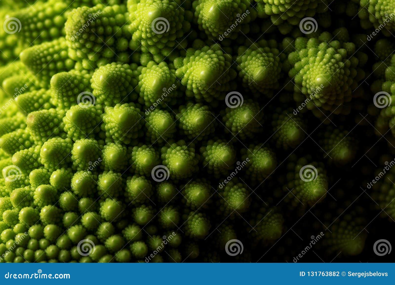 Ny makro för romanescokålgrönsak, selektiv fokus
