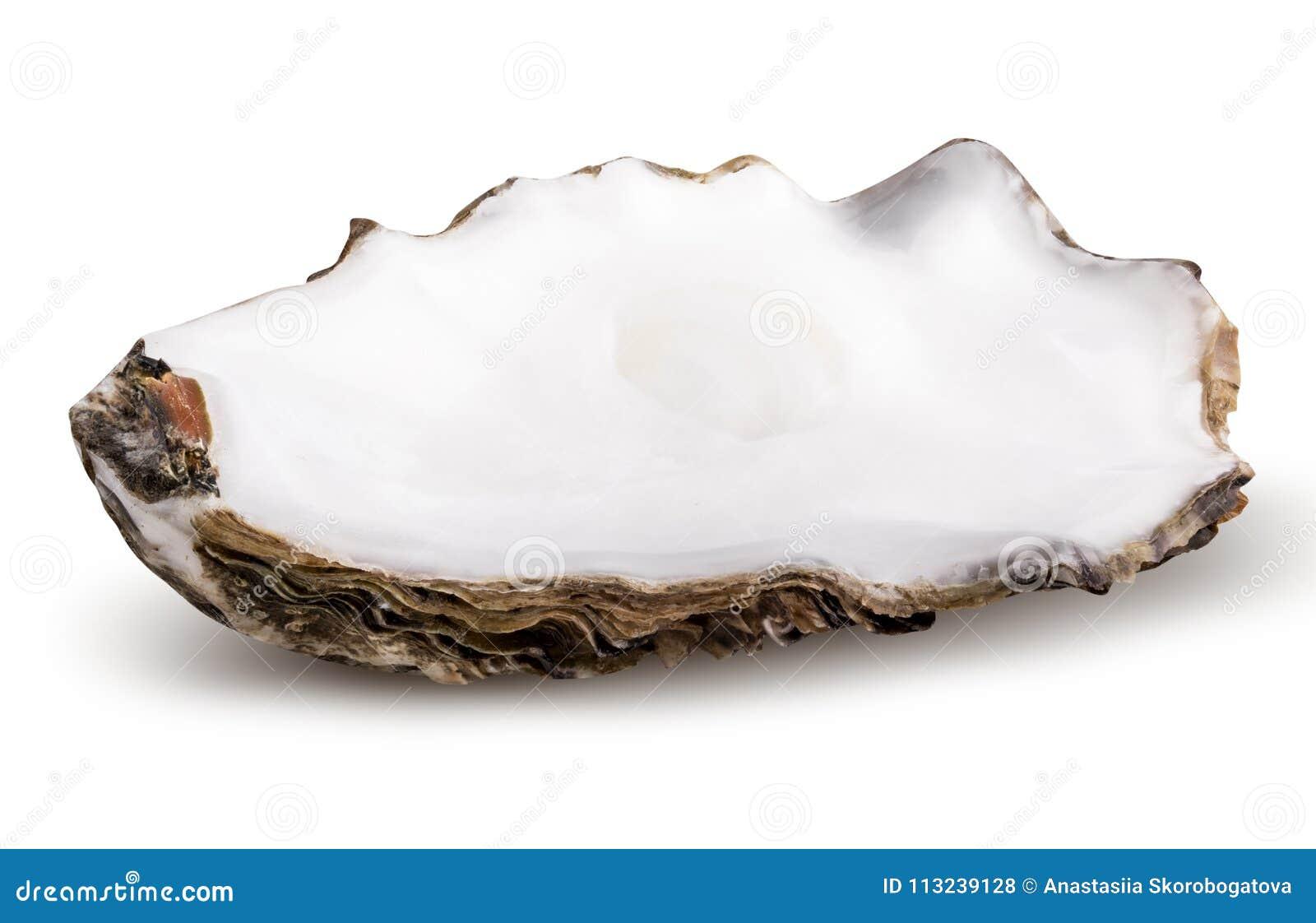 Ny ostron som isoleras med skugga Snabb bana