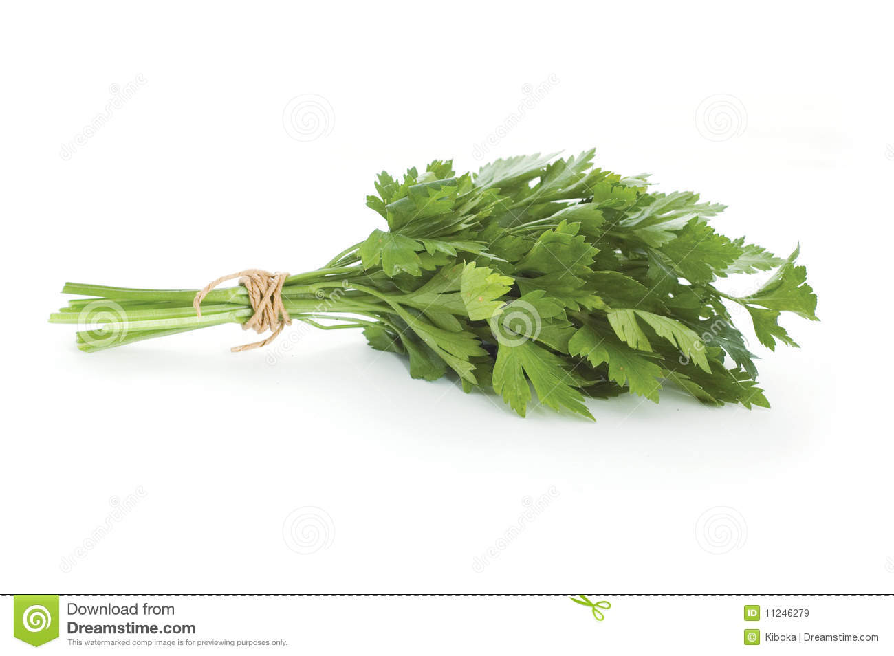 Ny parsley