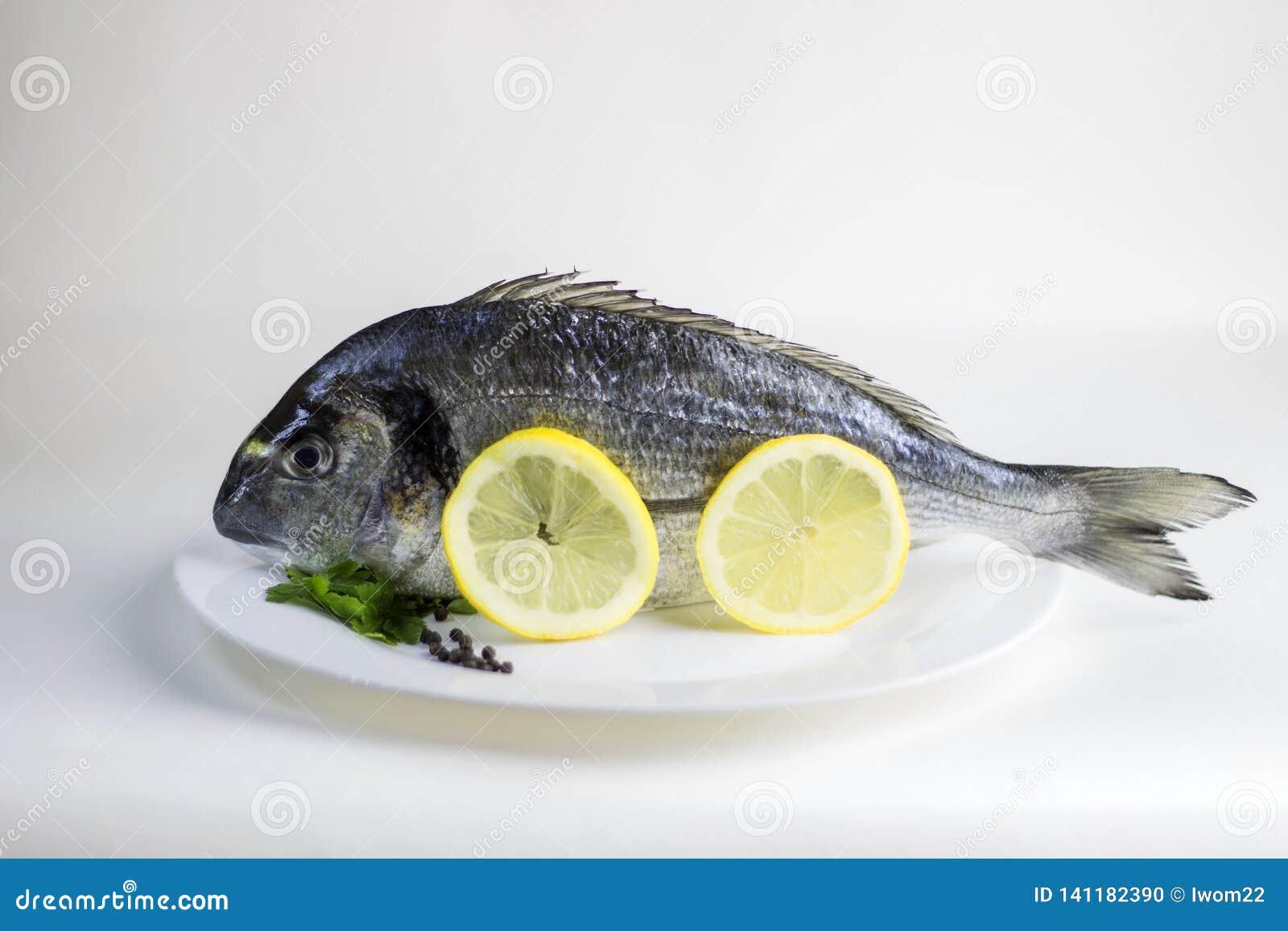 Ny, rå okokt hel doradofisk eller havsbraxen