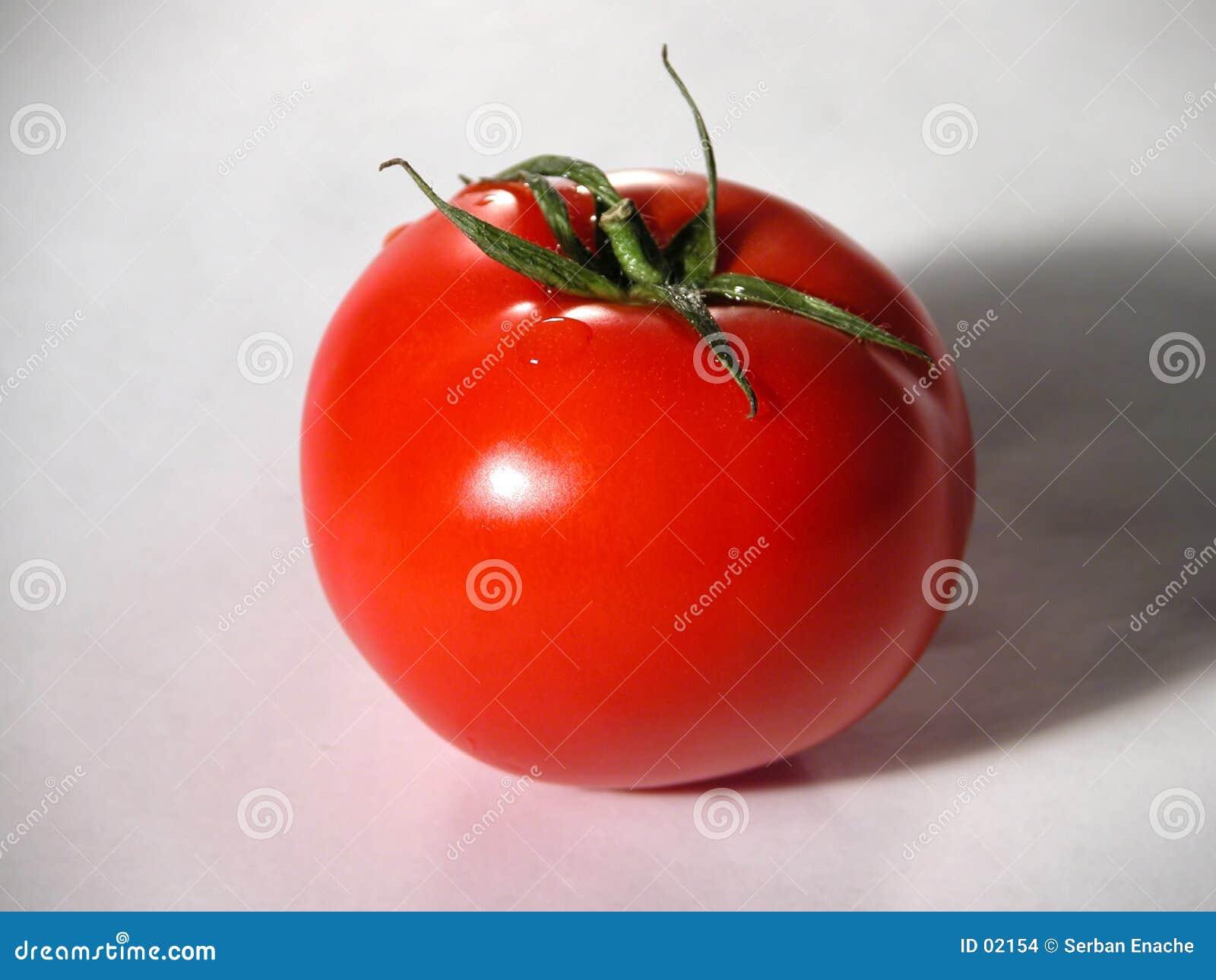 Ny röd tomat