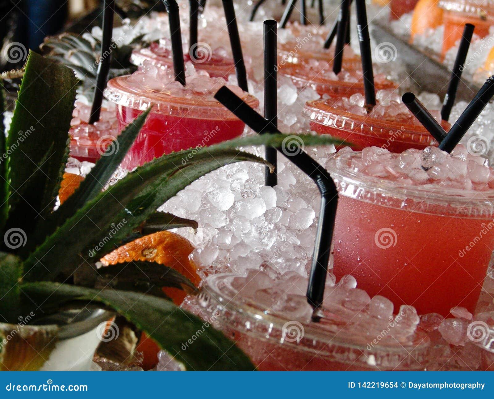 Nya frukt- kalla drinkar som mycket visas på en tabell av is, aloeverraväxter och frukt