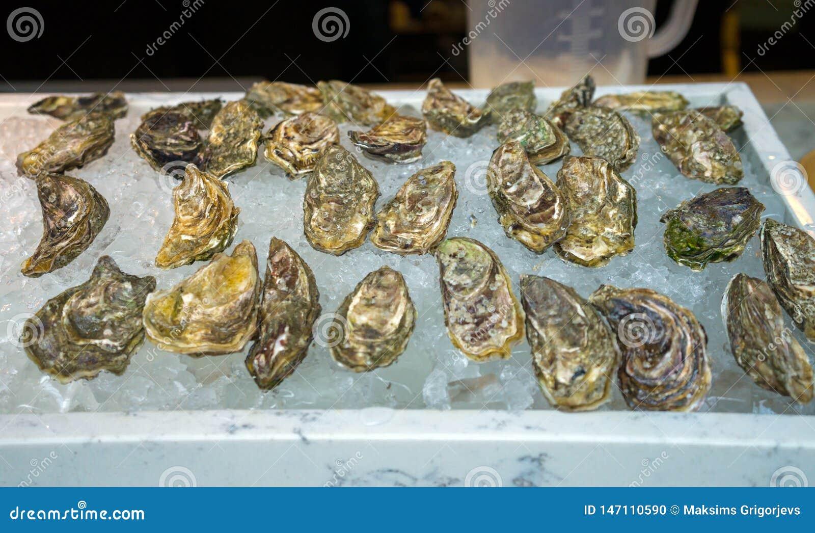 Nya ostron p? is som ?r till salu p? en havs- marknad