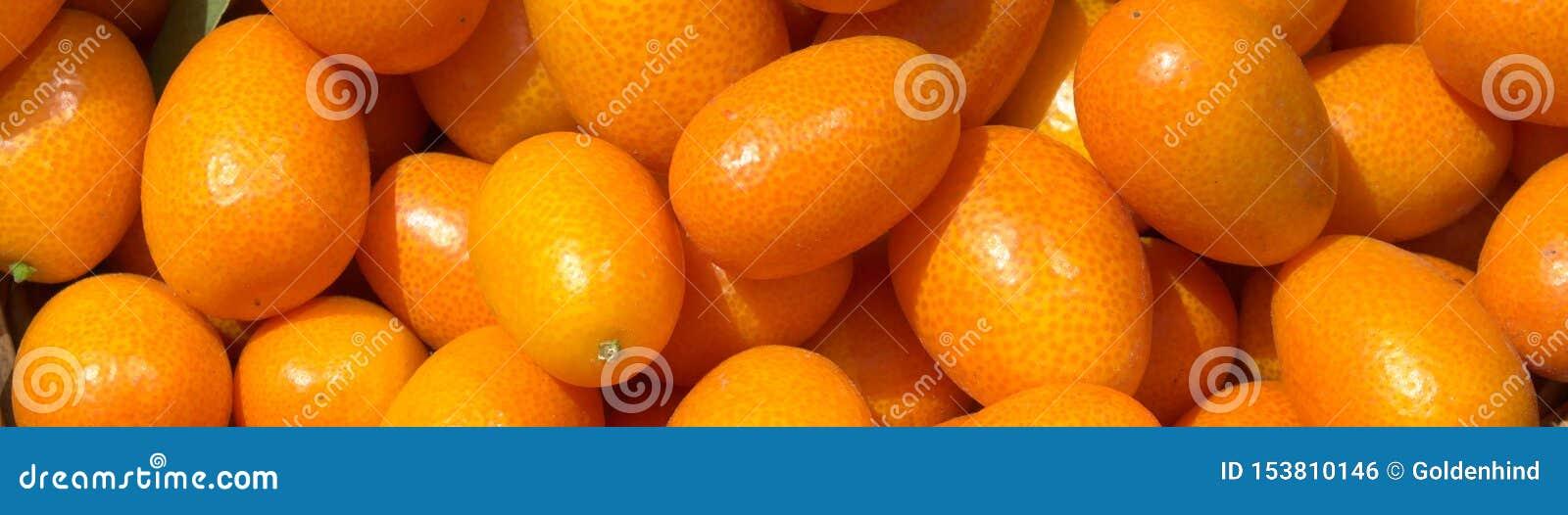 Nya saftiga kumquats i en korg i marknaden Orange bakgrund av nya apelsiner closeup