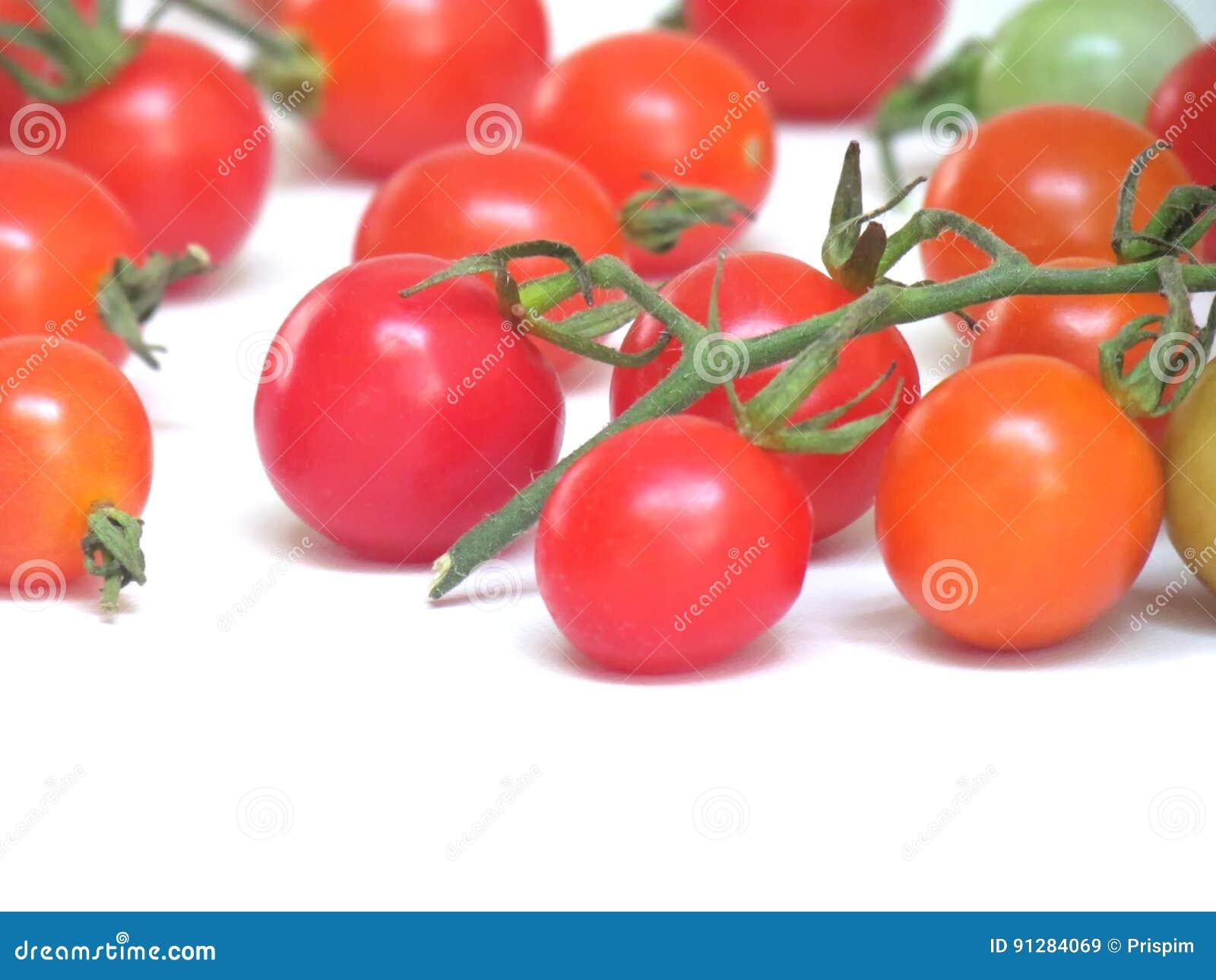 Nya tomater i en variation av färger