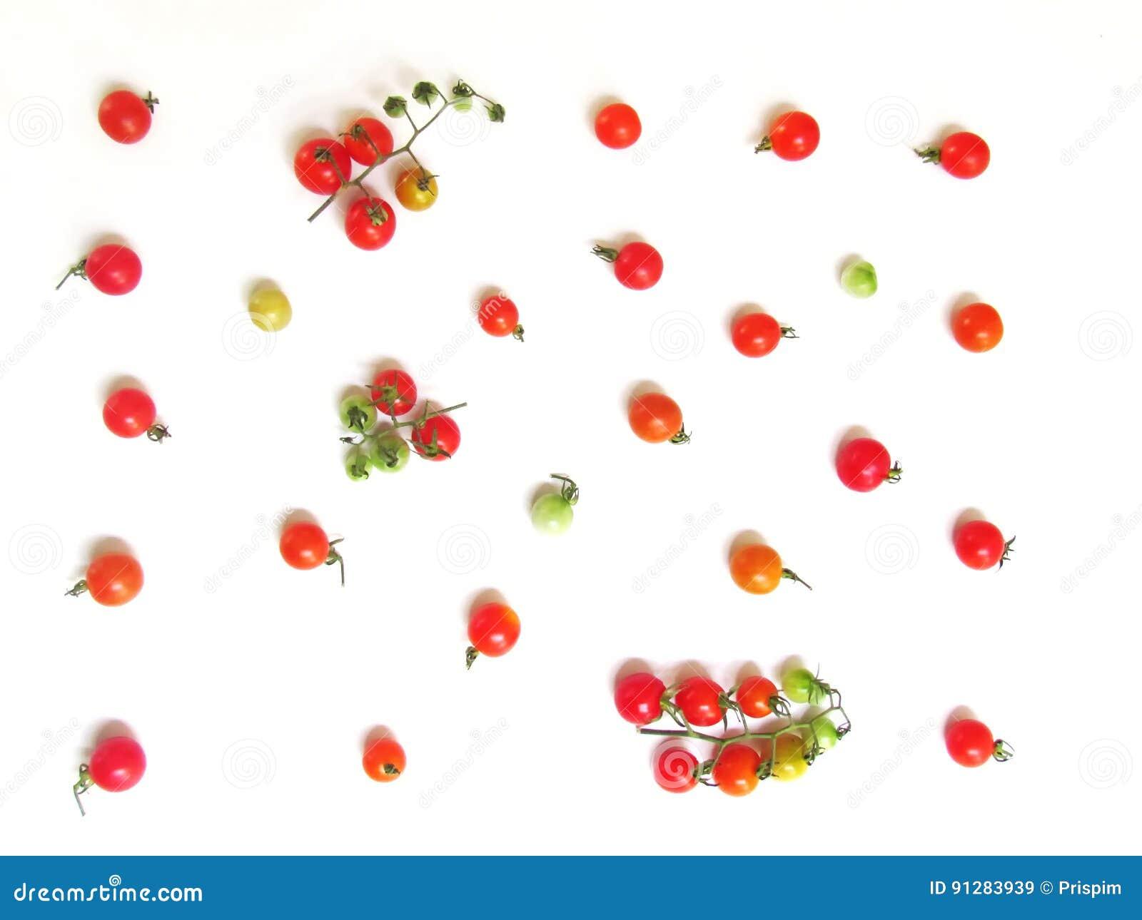 Nya tomater i en variation av färger för tapet