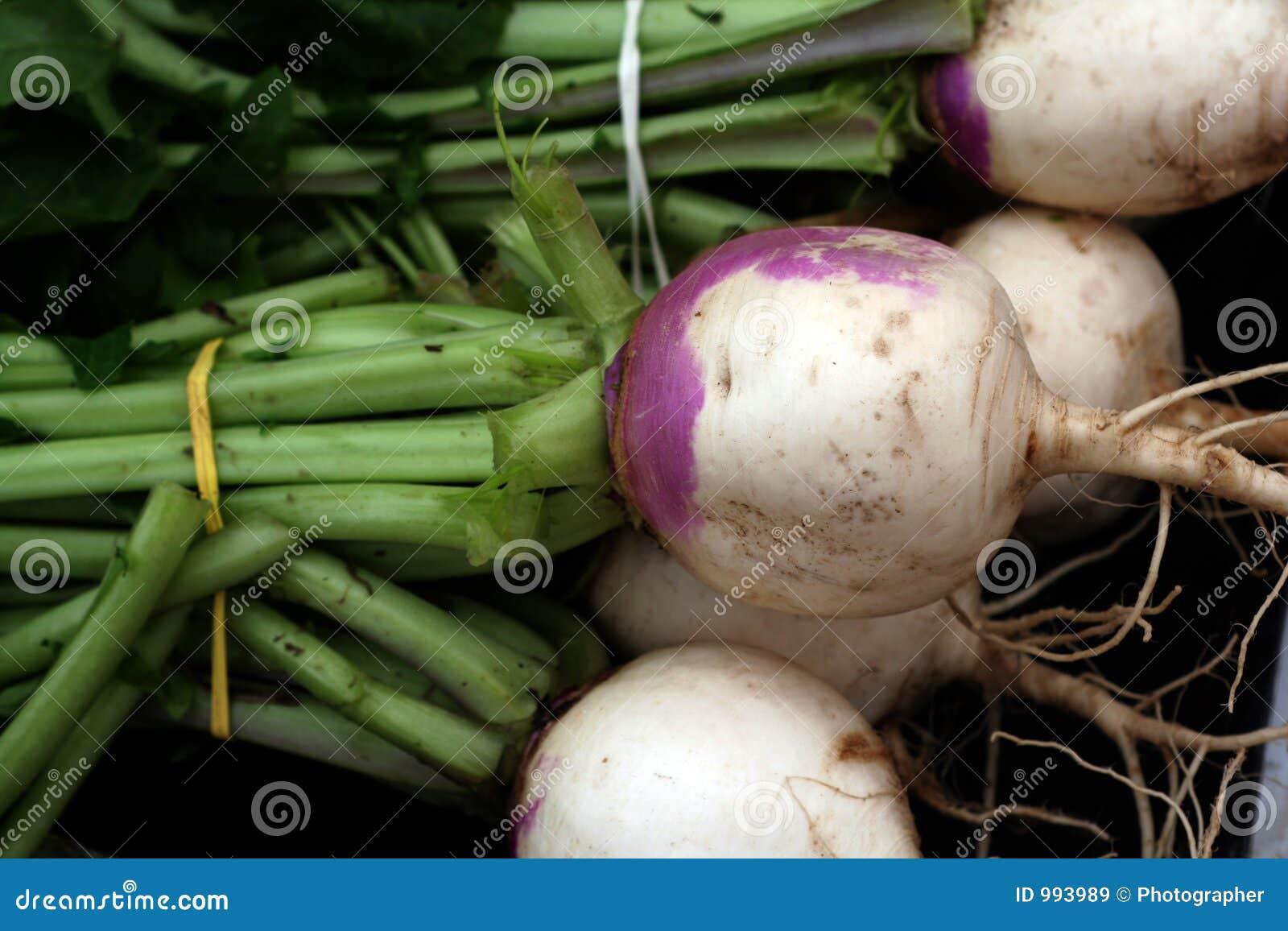 Nya trädgårds- grönsaker