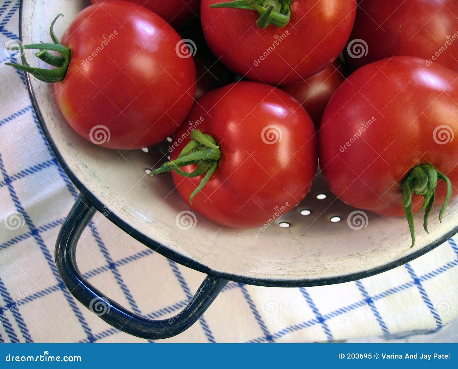Nya trädgårds- tomater