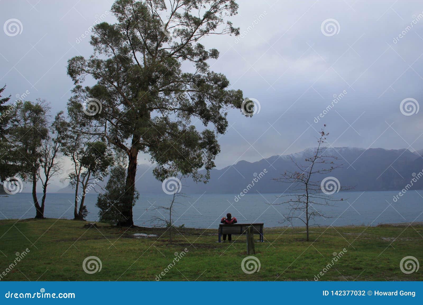 Nyazeeländskt landskap vid floden
