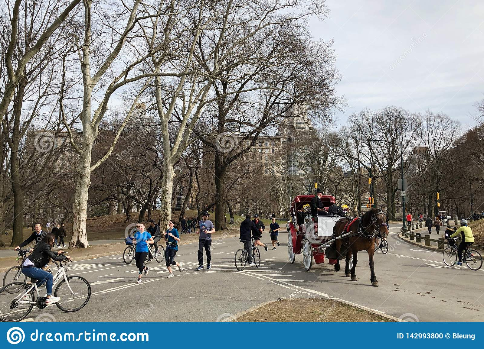 New York City, New York - March 24, 2019: People enjoying a sunny and warm day by taking a horse carriage ride in Central Park