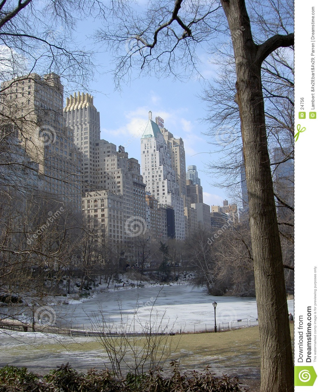 NYC Central Park in inverno