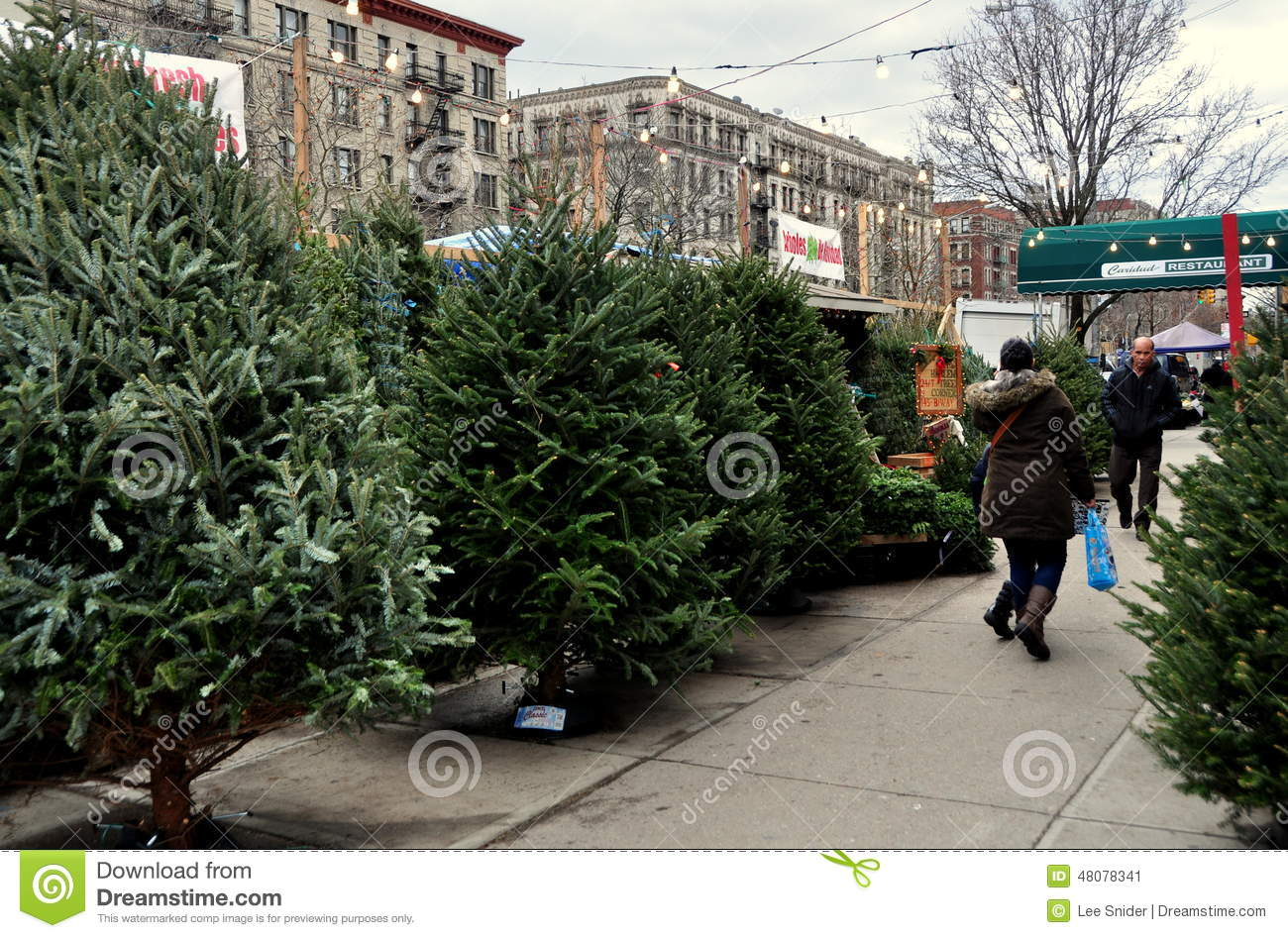 NYC: Sidewalk Christmas Tree Stand Editorial Photo - Image: 48078341