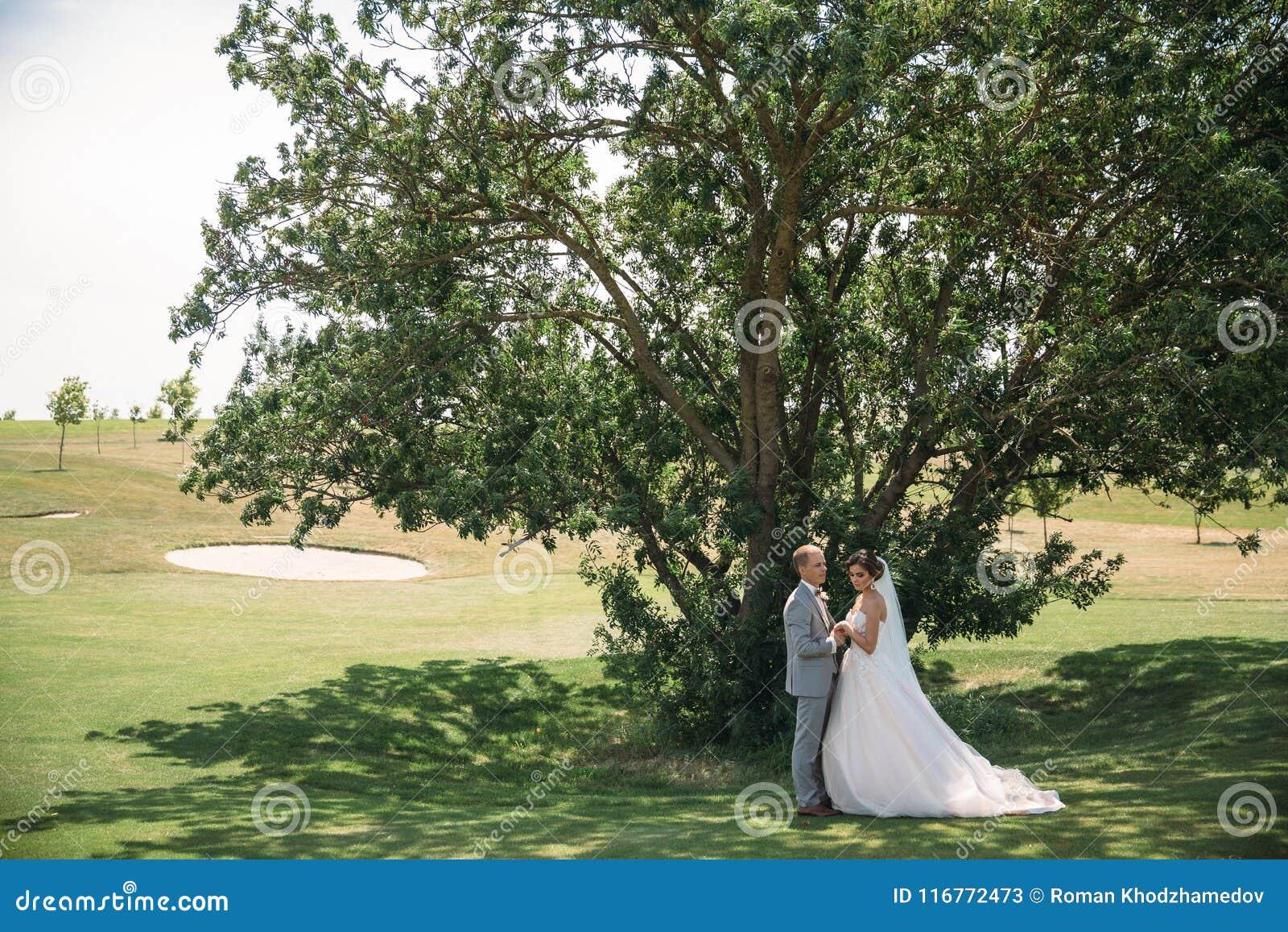 Nygifta personer på en grön trädbakgrund i en golfklubb på en bröllopdag Brudgummen i en affärsdräkt är grå färg och bruden