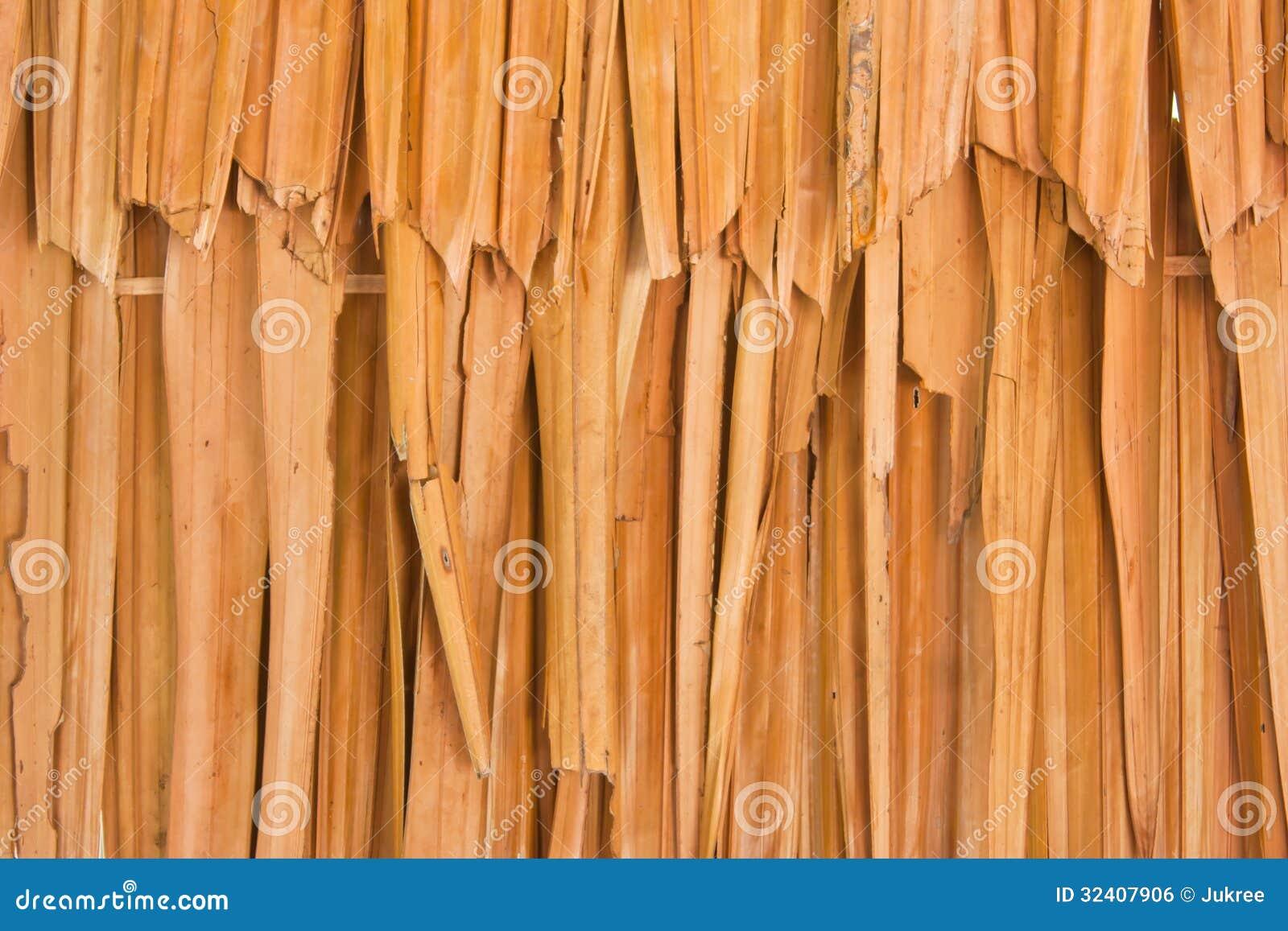 Nypa Fruticans Nipa Palm Stock Photo Image Of Pattern