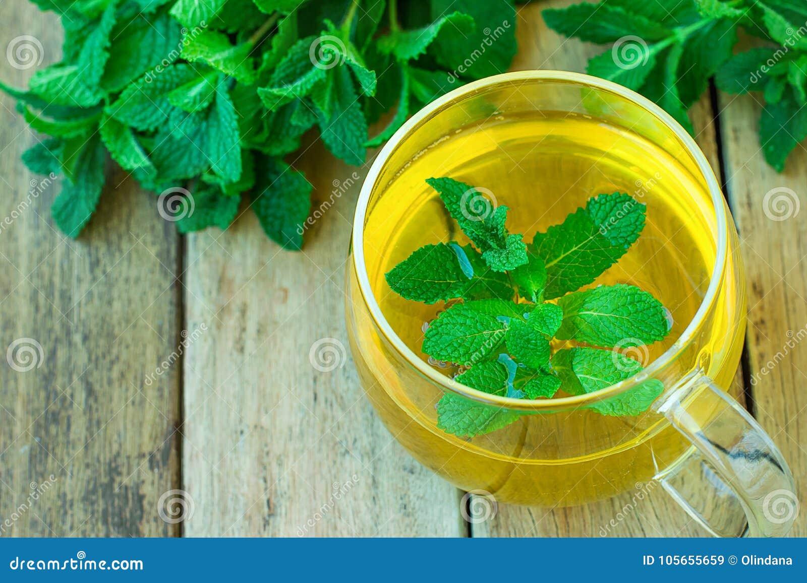 Nytt Brewd växt- mintkaramellte i Glass koppgräsplanörter på detoxen Ayurveda för drink för holistisk medicin för tabell för plan