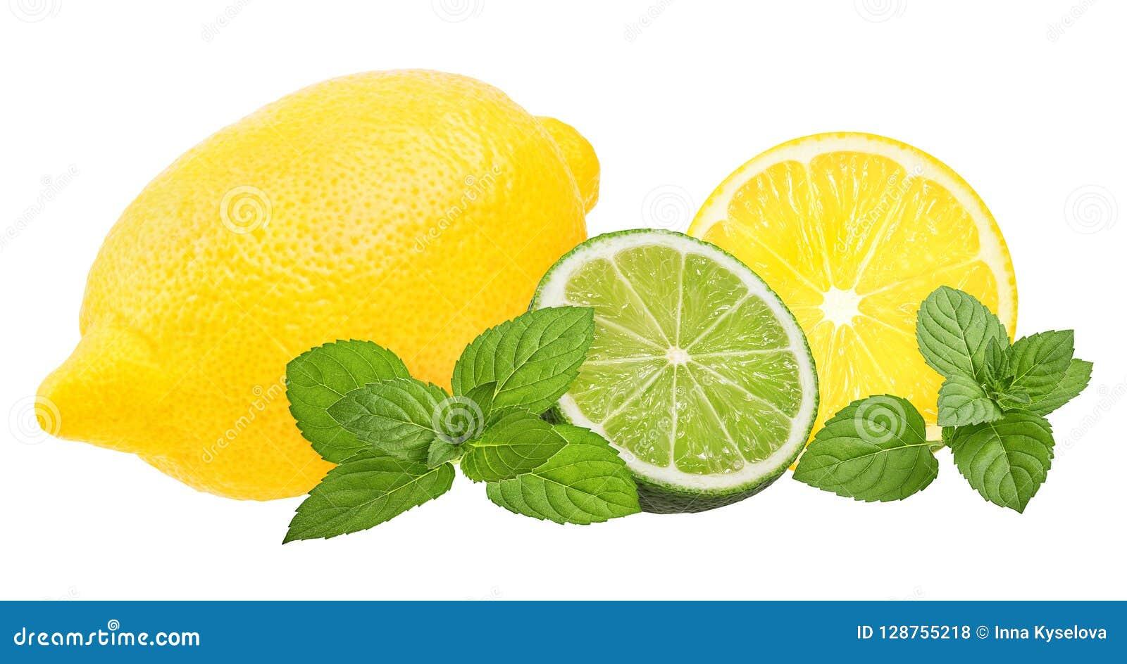 Nytt citron, mintkaramellblad och limefrukt som isoleras på vit