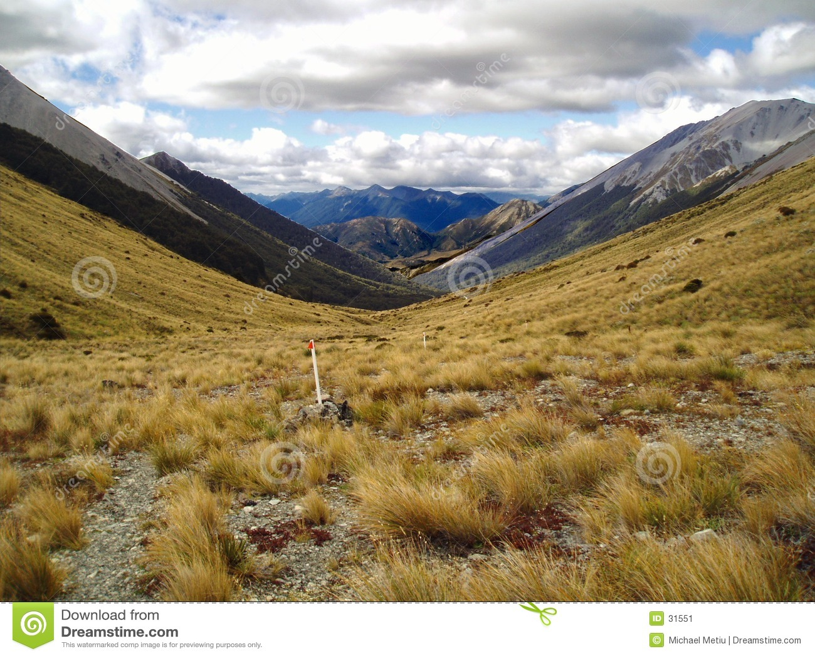NZ bergen