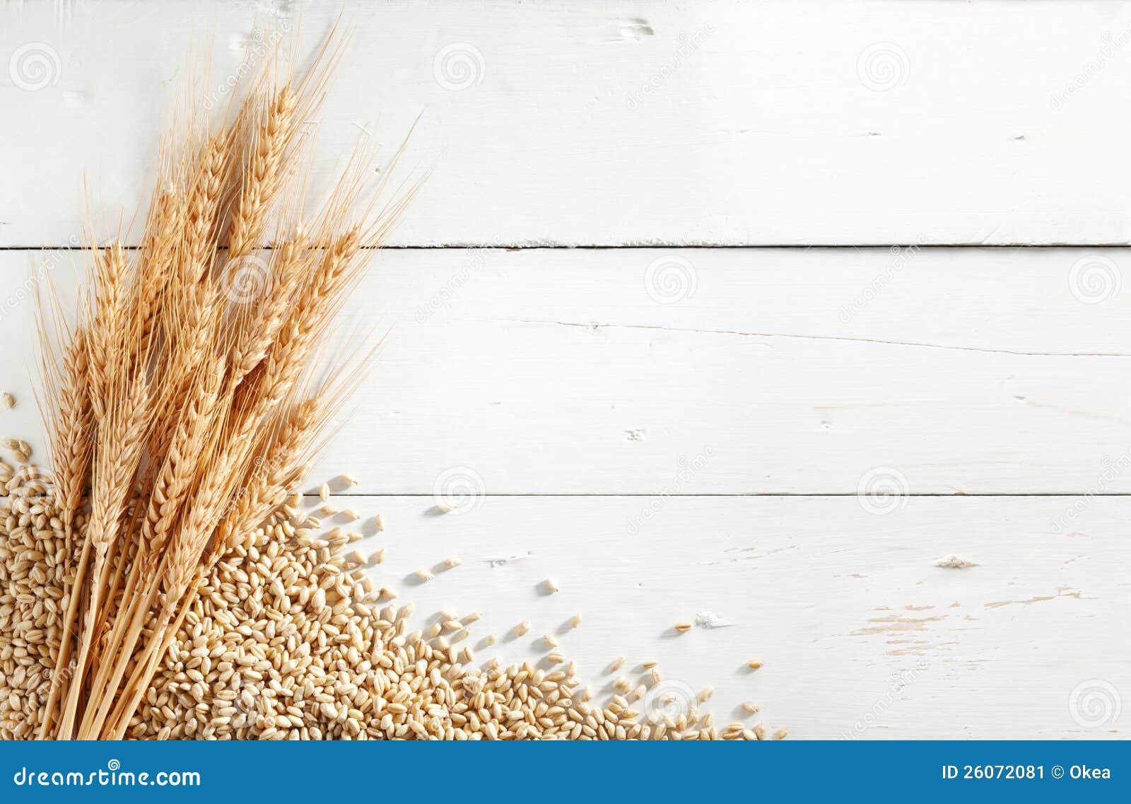 Oídos y granos del trigo