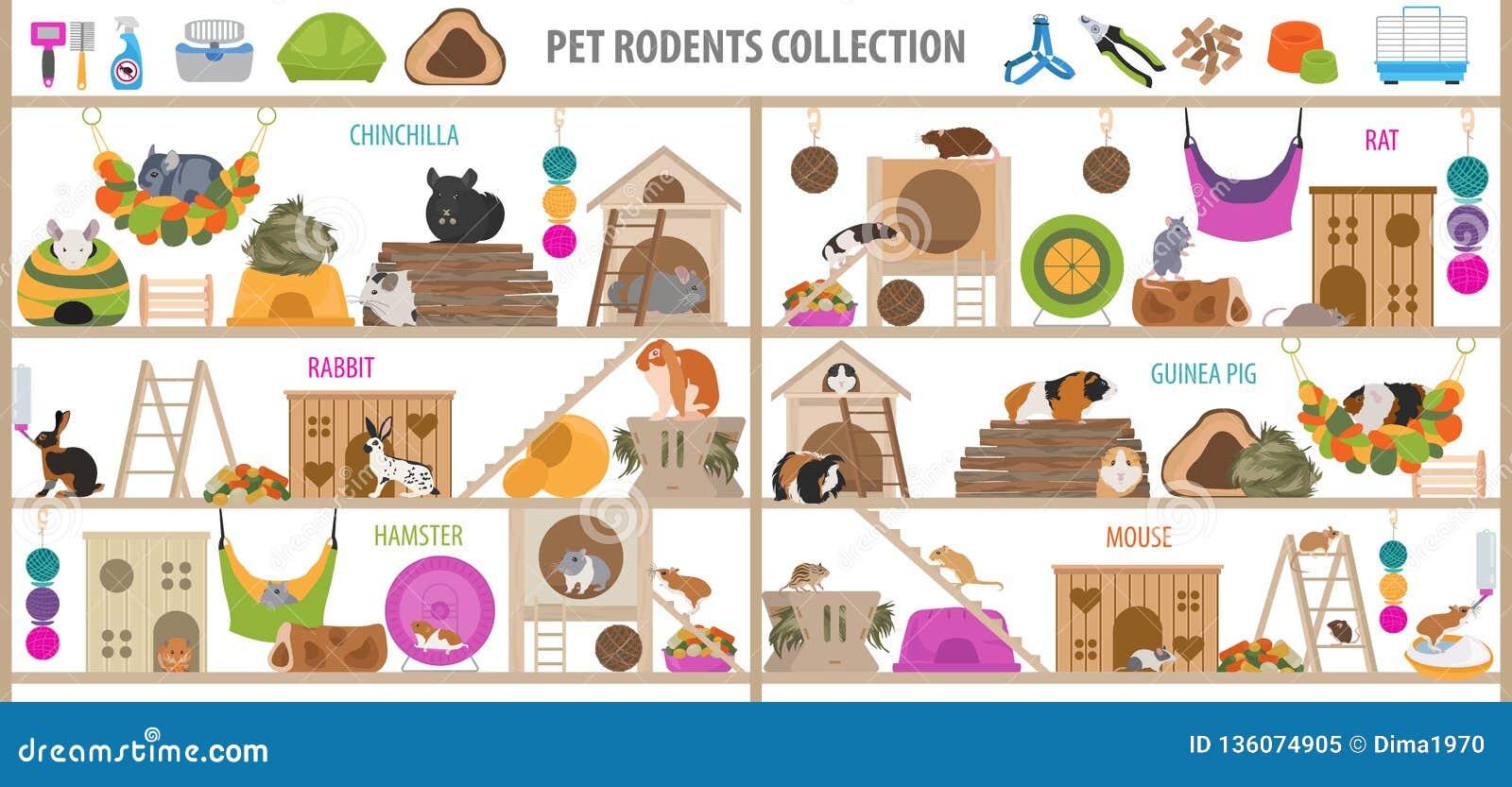 O ícone dos acessórios da casa dos roedores do animal de estimação ajustou o estilo liso isolado no branco Coleção dos cuidados m