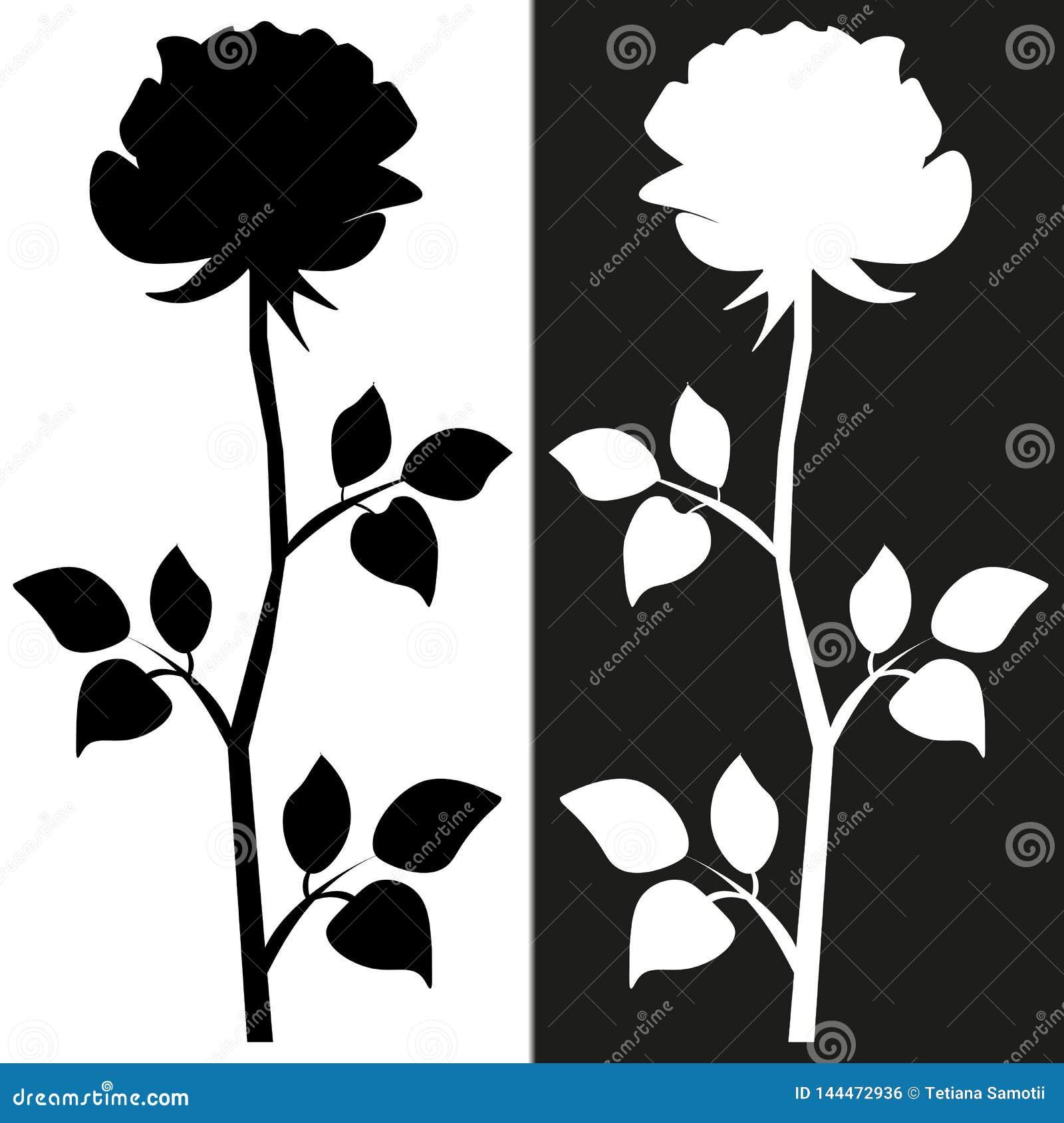 O Σκίτσο μοτίβου λουλουδιών για το σχέδιο Η μαύρη σκιαγραφία αυξήθηκε με τα φύλλα