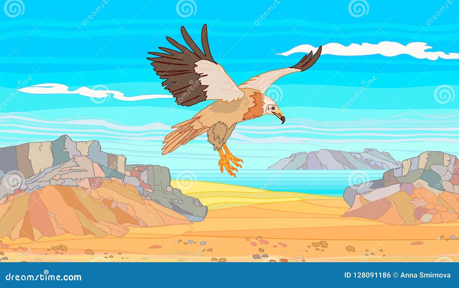 O abutre do Socotra da ilha nas montanhas de pedra