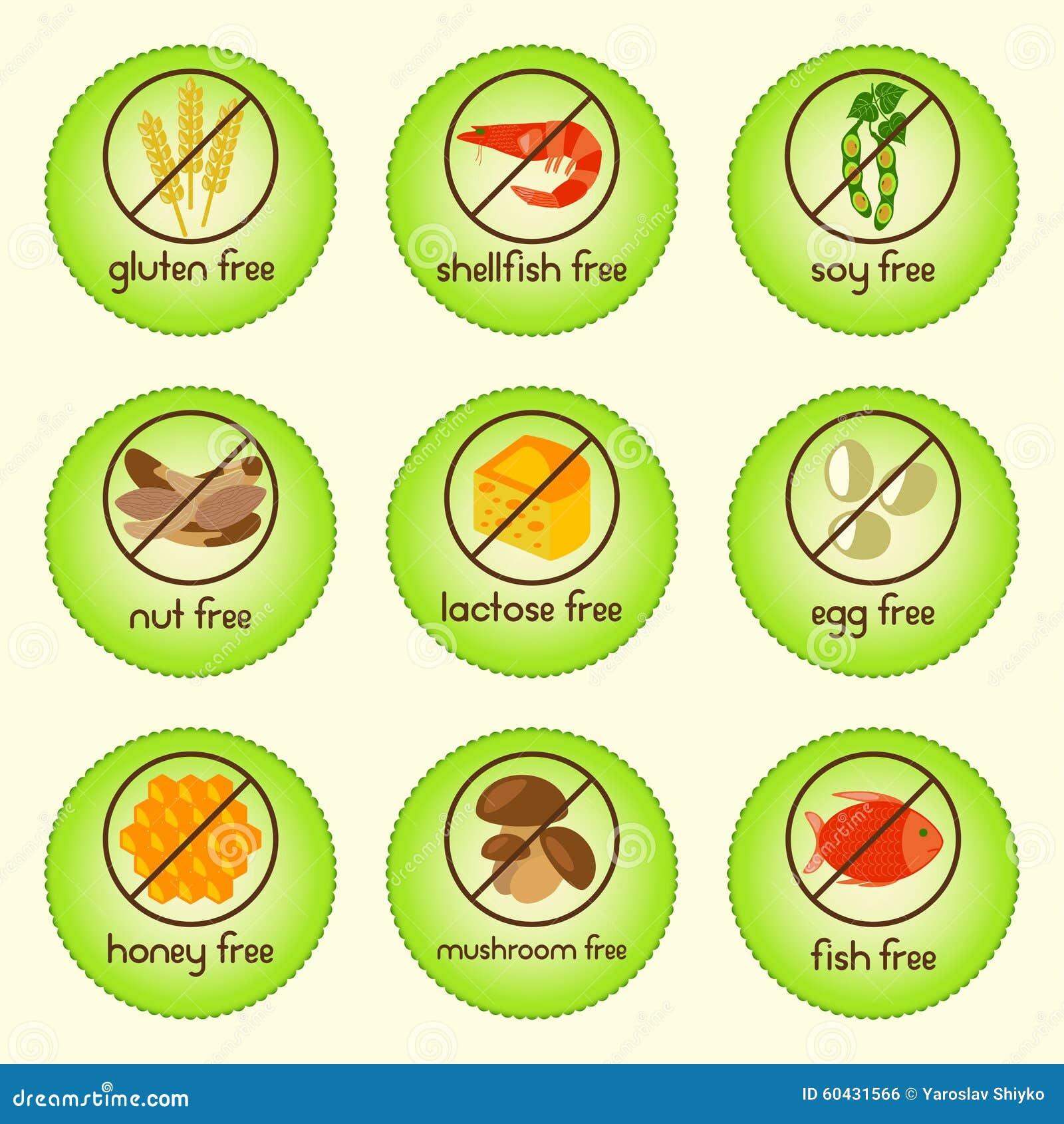 O alimento colorido do alérgeno ajustou-se com sem glúten, marisco livre, soja livre, porca livre, lactose livre, egg livre, mel