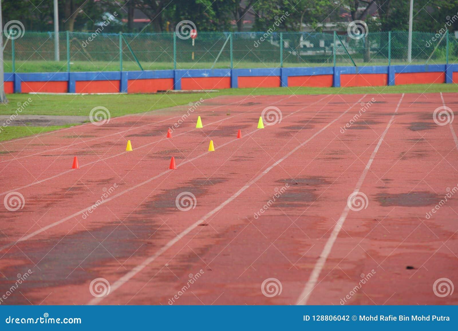 O atletismo artificial com grama verde combinou com a grama artificial