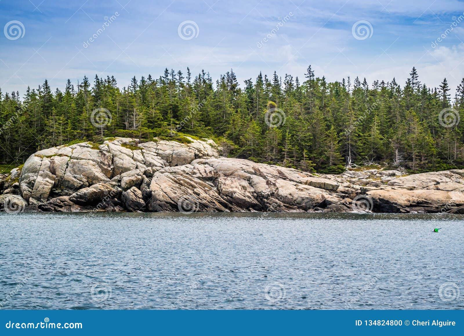 O au bonito Haut de Duck Harbor Isle no parque nacional do Acadia, Maine