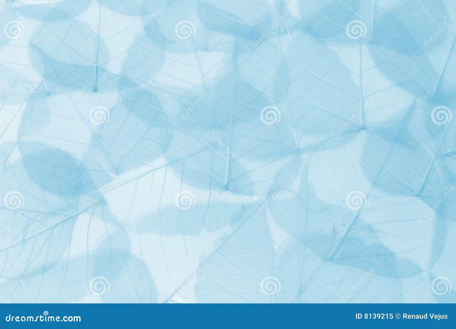 O azul sae do fundo