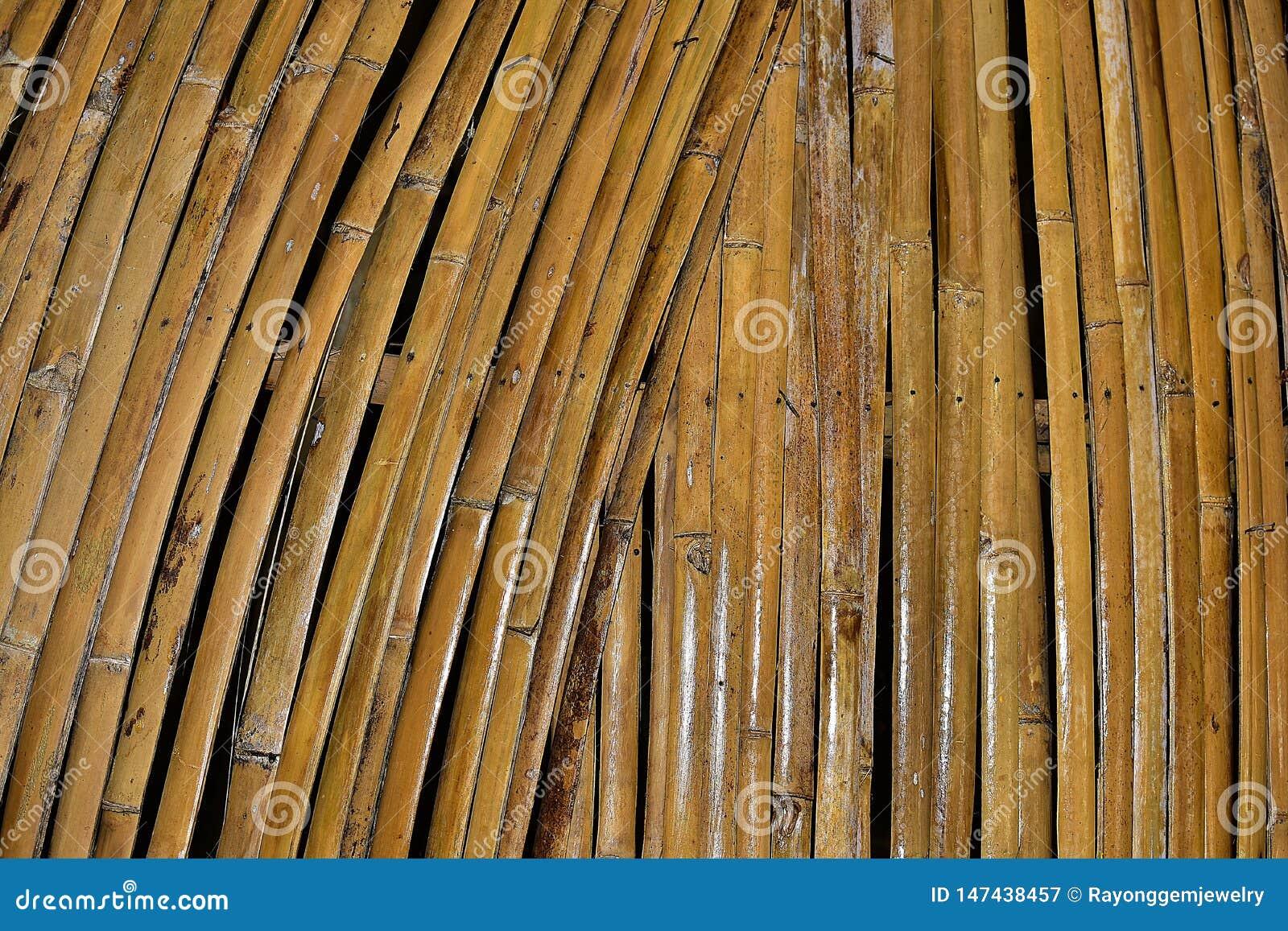 O bambu seco é um ofício