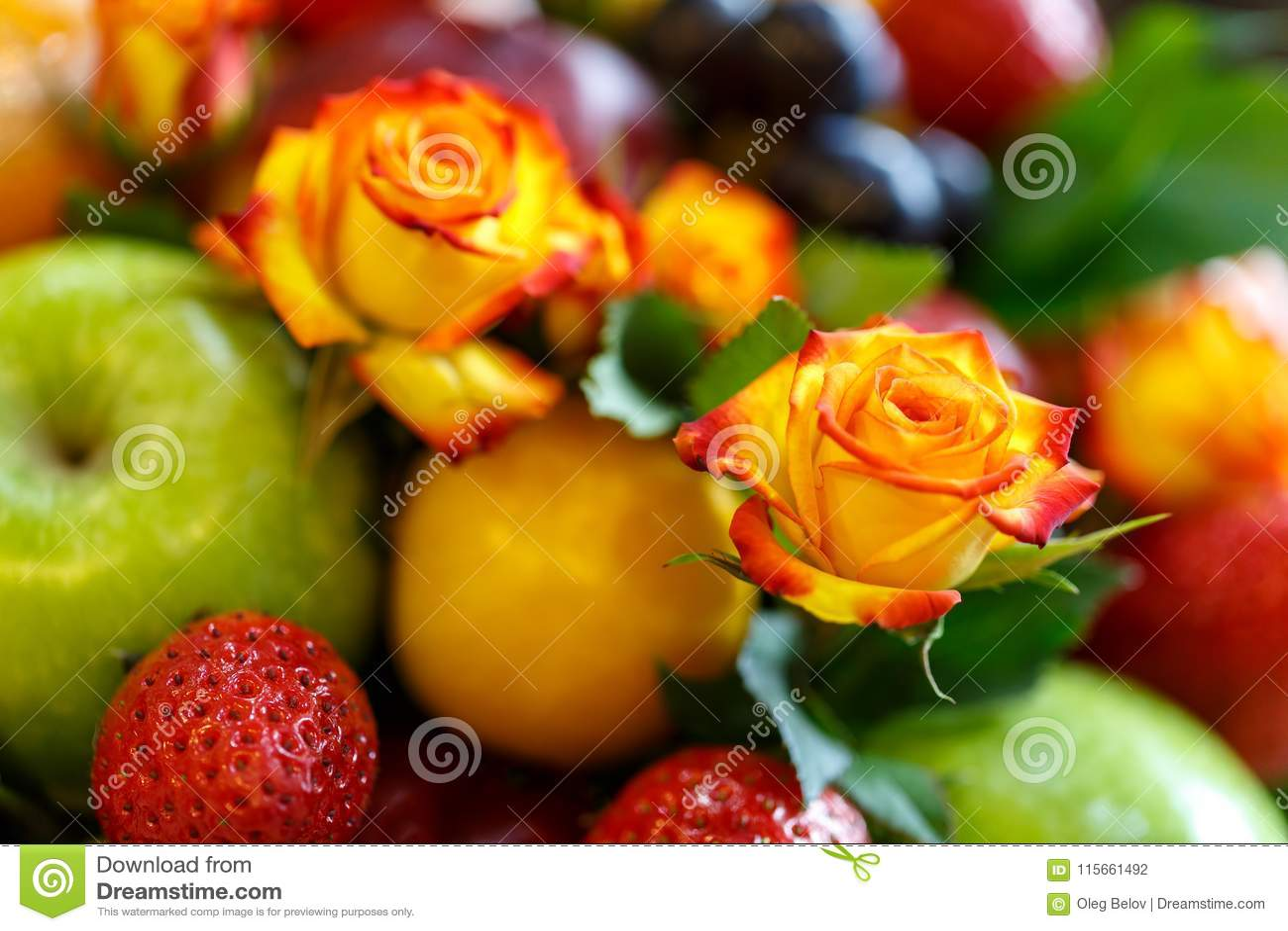 O botão de um laranja-vermelho aumentou contra um fundo de um ramalhete brilhante do fruto