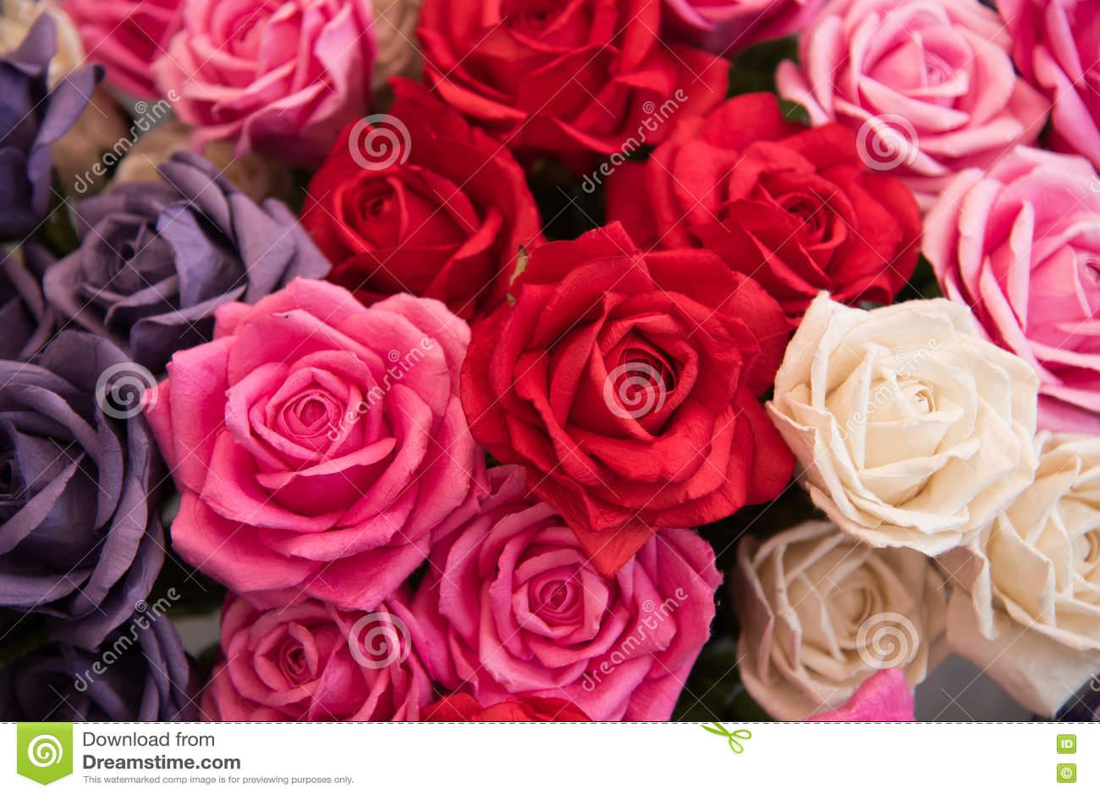 O bouganvilla de papel de Flower