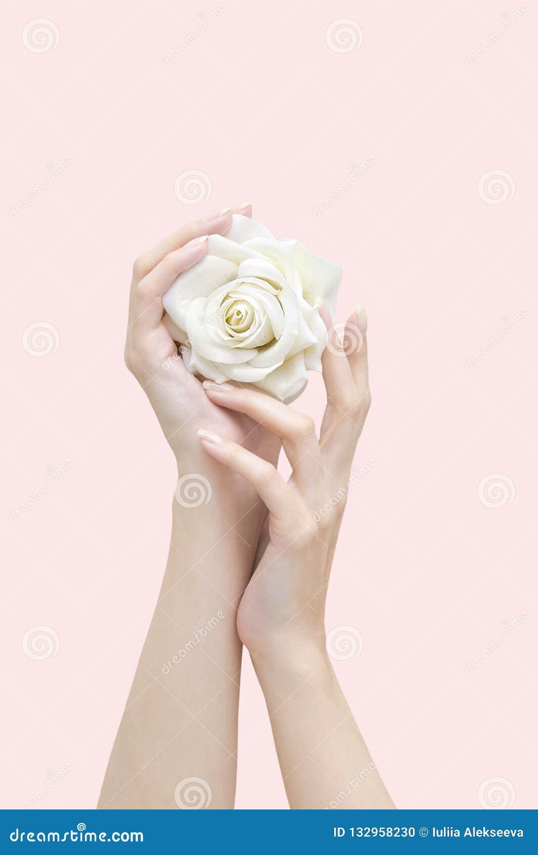 O branco levantou-se nas mãos fêmeas