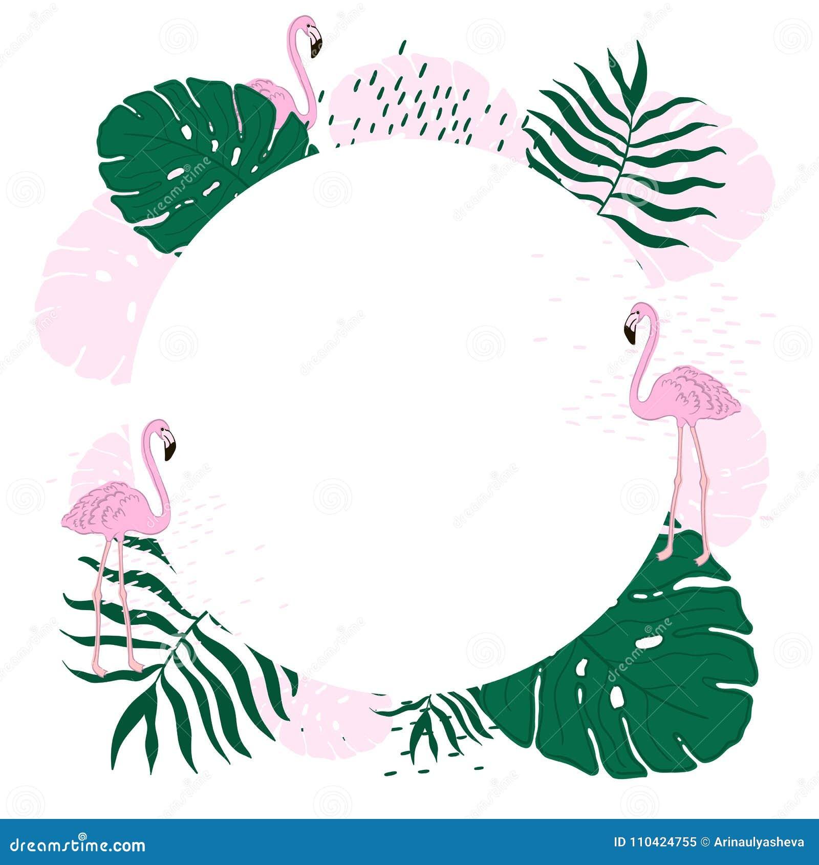 O Círculo Tropical Do Quadro Saem E A Bandeira Do Verão Do Flamingo