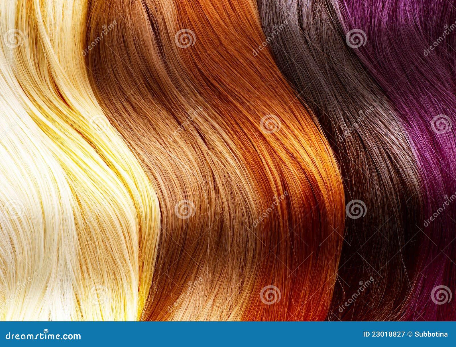 O cabelo colore a paleta