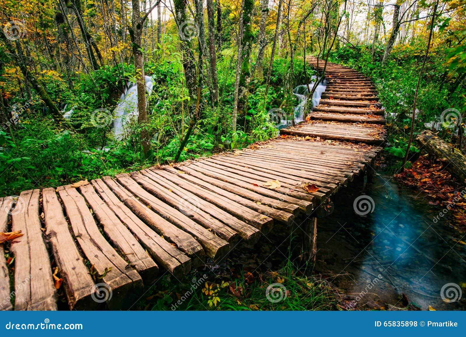 O caminho bonito da ponte de madeira na floresta profunda sobre uma turquesa coloriu a angra da água em Plitvice, Croácia, UNESCO