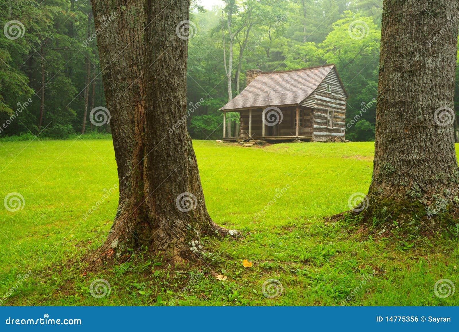 O Carter protege a cabine