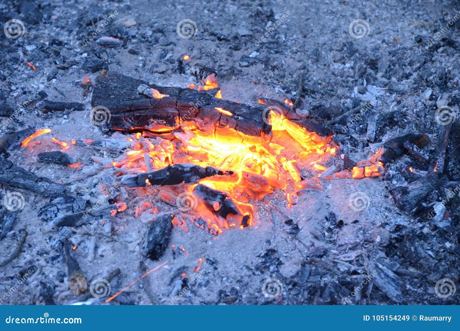 O carvão de madeira queima-se no fogo